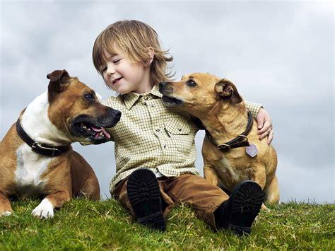 imagenes de niños jugando con animales las mejores razas de perros para ni 241 os me lo dijo lola