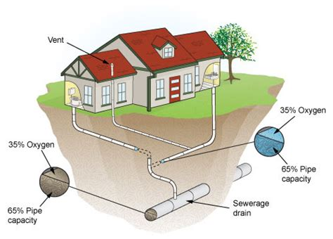 Australian Standards Plumbing And Drainage by Fashola Must Chion New National Standard For