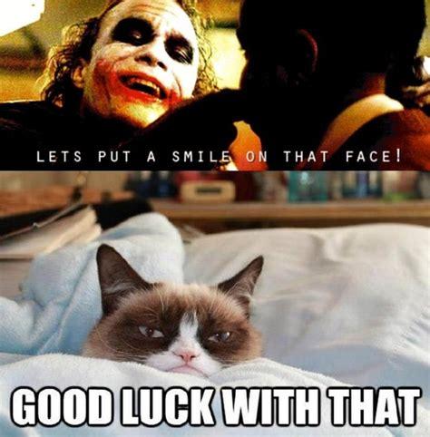 Cheer Up Cat Meme - grumpy cat never fails to cheer me up gt