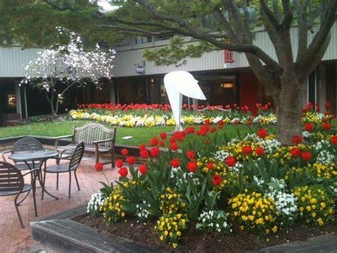 compa 241 ias de landscaping outdoor goods