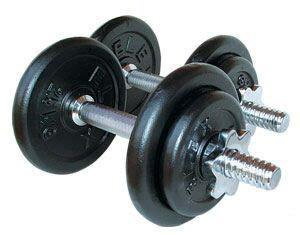 Dumbell Carrefour entrenamiento con dos mancuernas de 10kg fuerte que el hierro