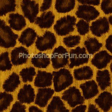 pattern photoshop leopard leopard skin texture textures patterns