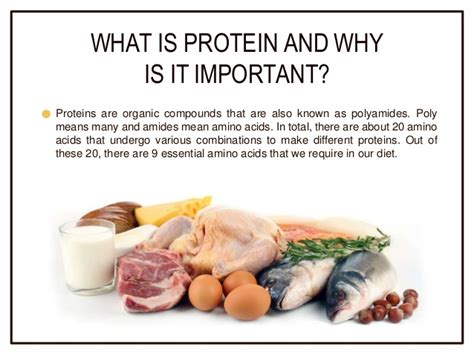 protein benefits why is protein important in weight loss health benefits