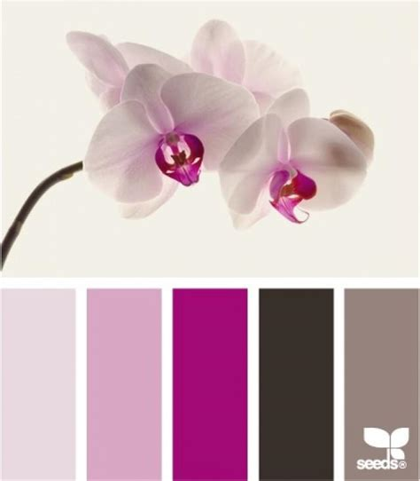 Farbe Orchidee by Radiant Orchid Pantone 2014 Color Weddbook