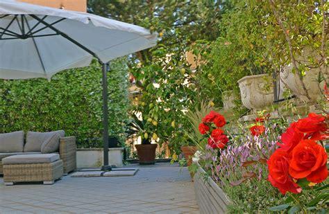 piante per terrazzo in pieno sole beautiful piante per terrazzo in pieno sole contemporary