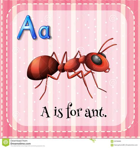 for a flashcard a is for ant stock vector image 58786889