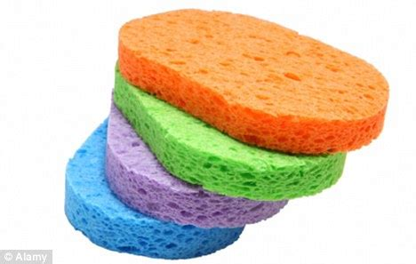 Kitchen Sponge Bacteria by Parenting Tips The Kitchen Sponge Is 200 000 Times