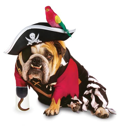 pirate puppy 10 incredibly nerdy costumes funcage