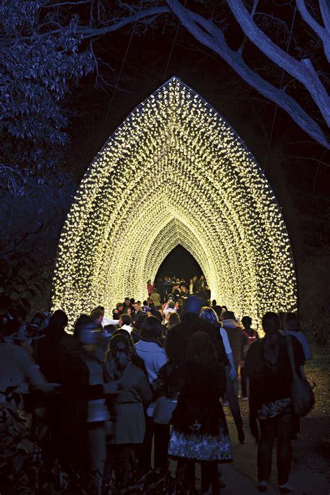 vivid sydney at the royal botanic garden 2016 sydney