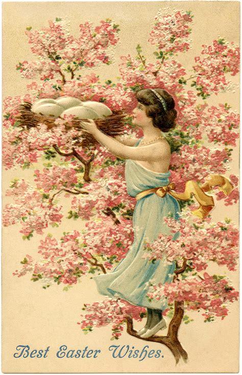 pretty cherry blossom nest image easter  graphics fairy
