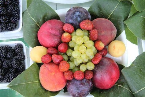 fruits pic file mixed fruit jpg wikimedia commons