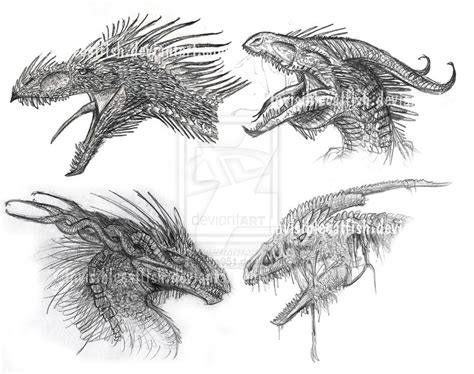 dragon heads by invisiblecatfish on deviantart