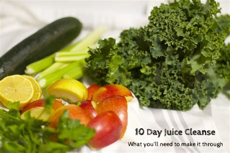 Https Detox Fyi Contact by 10 Day Juice Cleanse At Home Juice Cleanse