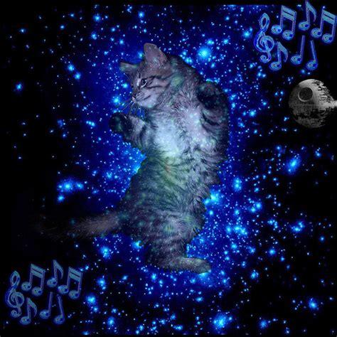 in space samba space cat
