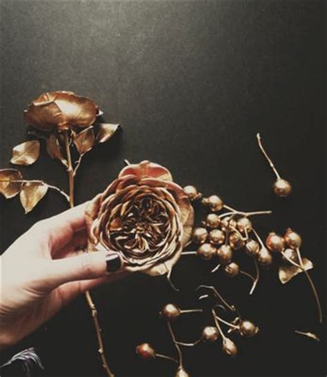 spray painted roses 25 best ideas about spray paint flowers on