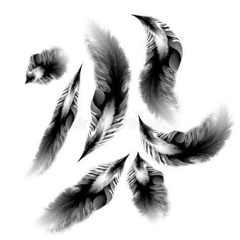 preteen girl with white feathers stock image image of set of vetor black white feathers stock image image