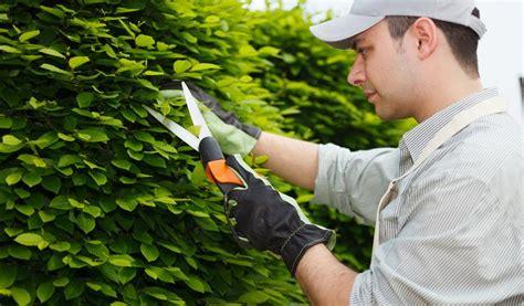 imagenes graciosas de jardineros jardineros en m 233 rida ecotap jardiner 237 a y fumigaci 243 n
