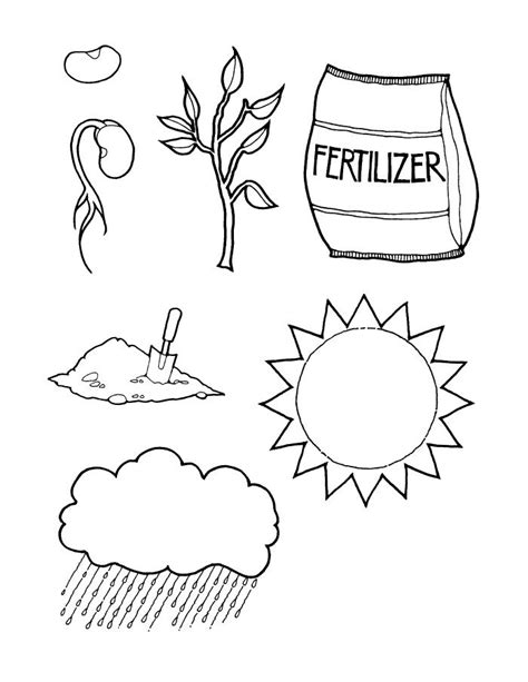 seed of faith coloring pages coloring pages
