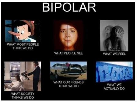 Bipolar Disorder Memes - 1000 images about pictures of bipolar disorder on