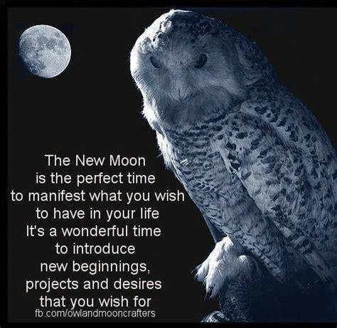 goddess designer manifesting with the moon cycles and s m a r t goals nurturing your passions desires into abundance books owl moon quotes quotesgram