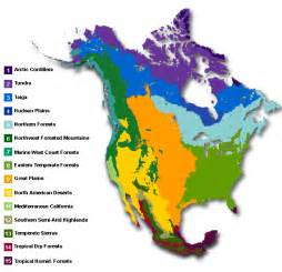 Biome Map Of North America by Major Biomes Of North America