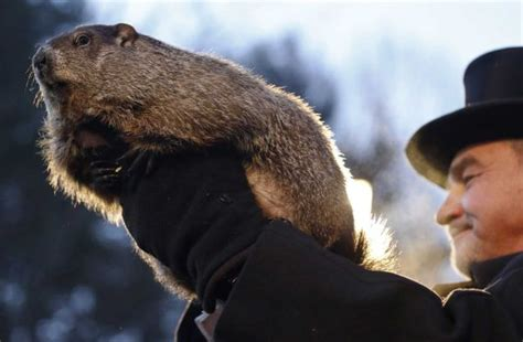 groundhog day lottery groundhog day is silly but as a scientist i it