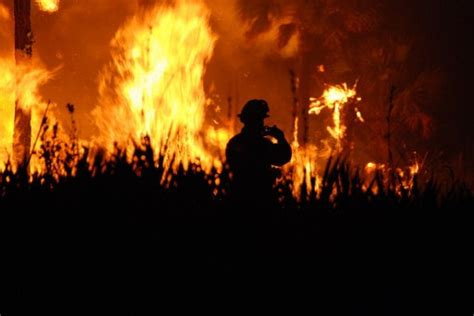 florida wildfires causes effects and solutions to wildfires conserve