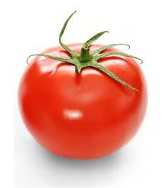tomato color vermillion tomato colors photo 34537432 fanpop