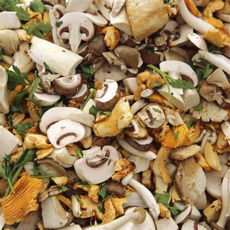 cucinare funghi coltivati funghi in cucina la cucina italiana