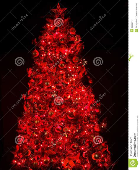 picture of a christmas tree with a red scarf aroud the top tree with light and stock image image 22220747