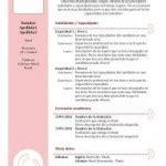 Modelo Curriculum Femenino Curriculum Vitae En Pdf Cv En Pdf Modelo Curriculum