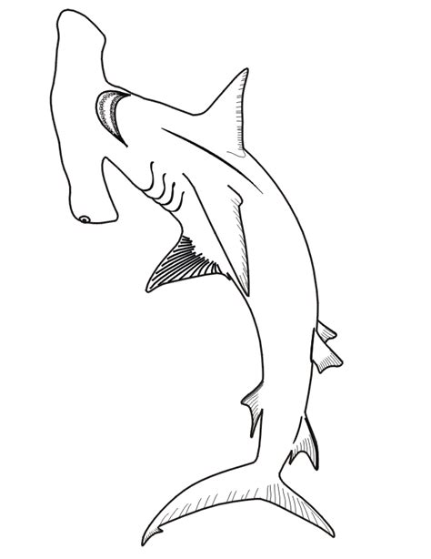 coloring page of a hammerhead shark free coloring pages of hammerhead sharks