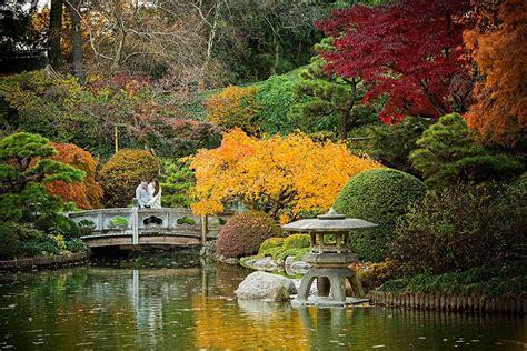Bk Botanical Gardens Botanic Garden Danamarie Matthew Camelot Studios