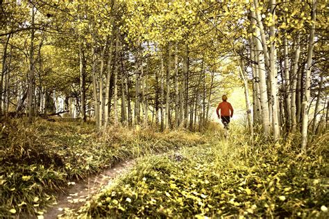 us running routes trails groups events and races top st louis trail races terrain magazine