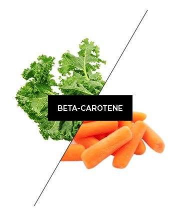 Vitamin Beta Caroten Puritan 10000 Iu 100 Original puritan s pride beta carotene 10 000 iu 100 softgels