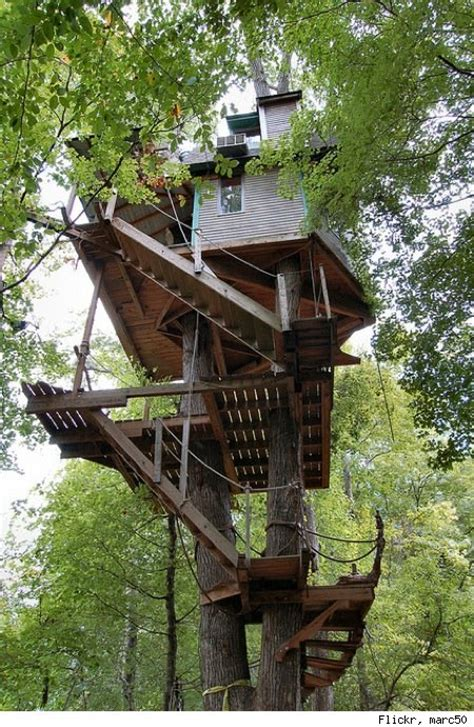 crazy tree houses comedy news viral videos late night tv political humor funny slideshows huffpost