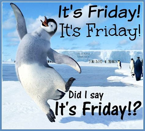 i am so excited its friday pictures photos and images