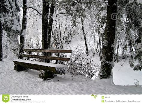 bench in snow bench in snow royalty free stock photos image 559148