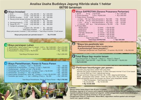 Prospeknya Usaha Budidaya Dengan budidaya jagung dengan agens hayati mmc agrokompleks mmc