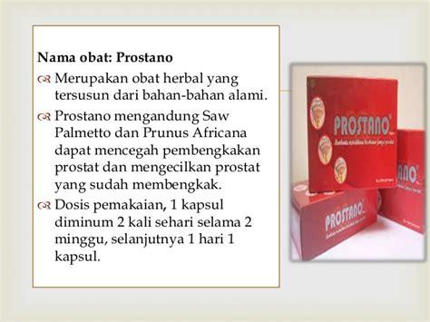 Obat Herbal Prostano hormon sintesis pria