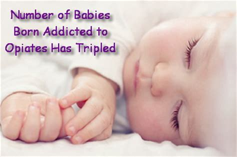 Can A Baby Detox From Opiates In The Womb by Newborns Addicted To Opiates Neonatal Abstinence