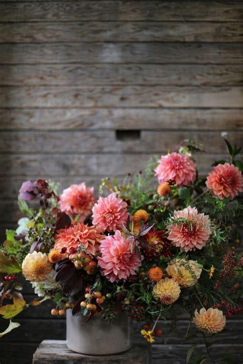 regalare un fiore ad un uomo regalare un fiore ad una persona speciale a flower