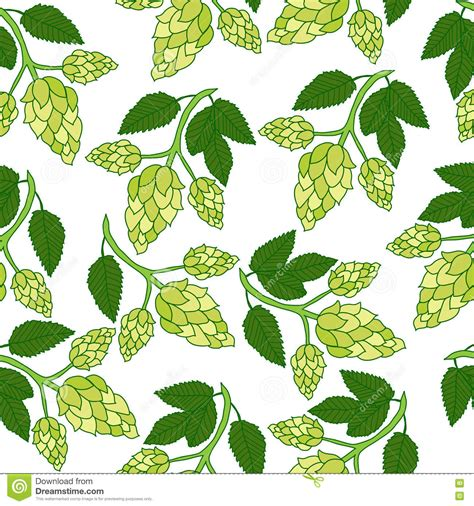 pattern plant drawing hops plant seamless pattern hand drawing style hops
