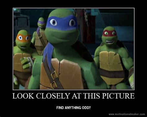 Wrong Hole Turtle Meme - 248 best images about tmnt on pinterest meme pictures