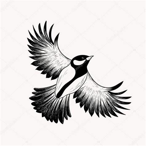 sketch flying bird hand drawn vector illustration
