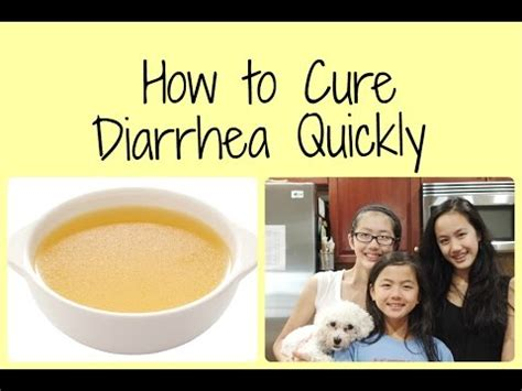 how to get rid of puppy diarrhea how to get rid of diarrhea fashion