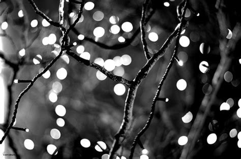 And White Black And White New Best Wallpapers