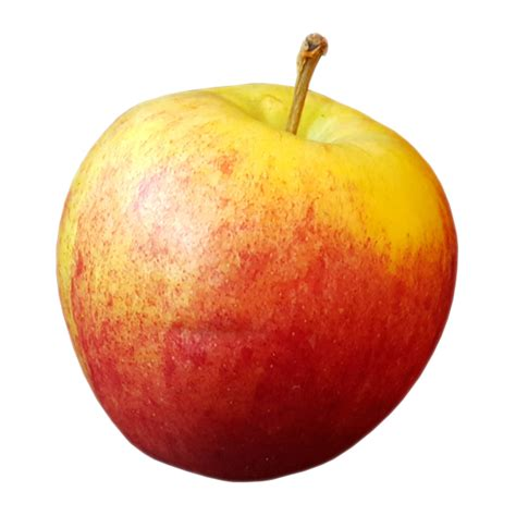 pictures with transparent background apple transparent background image