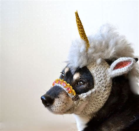 unicorn puppy unicorn www pixshark images galleries with a bite