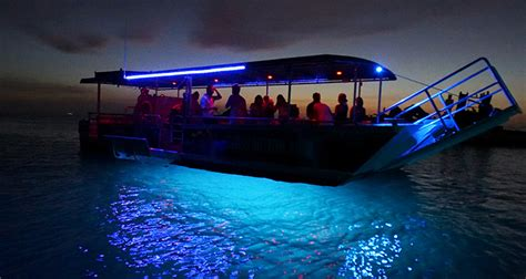 glass bottom boat tour glass bottom boat tours tangatours